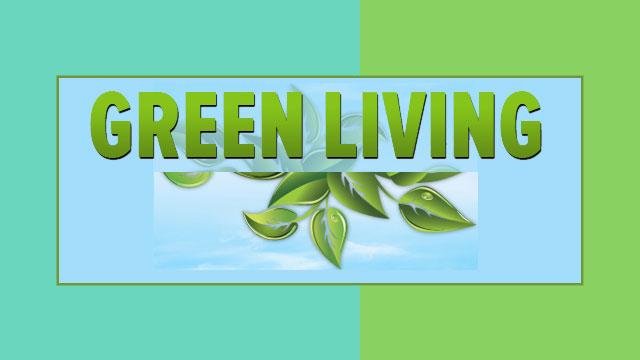 life-essentials-640x360-green-living_1432745352883.jpg