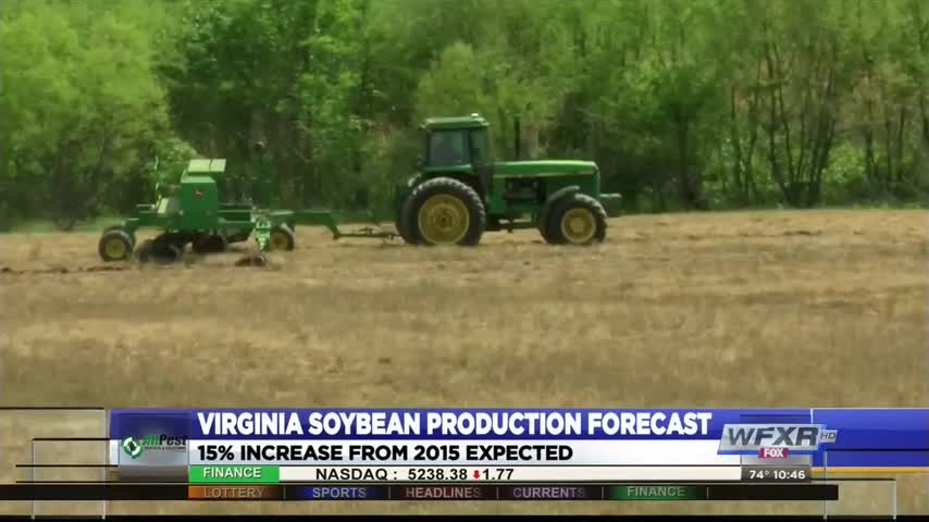 Soybean production_47196143-159532