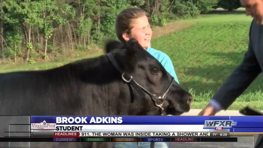 Youth Livestock Preview at Bedford County Fair_20160825144702