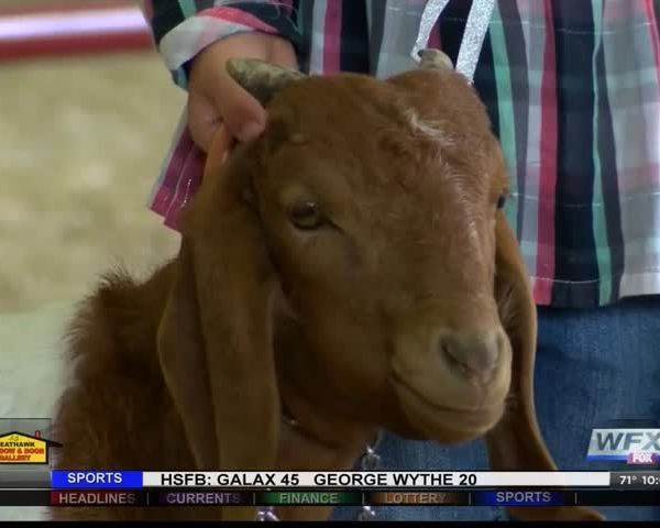 Franklin County Agricultural Fair is in full swing_31740183-159532