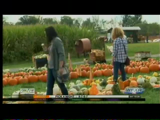 Sinkland Farms celebrates 25 years for Pumpkin Festival_92869354-159532