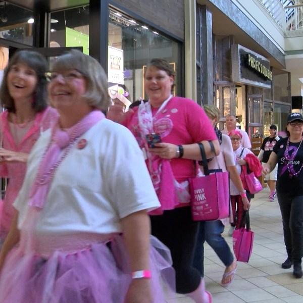pink parade 3_1475961407027.jpg