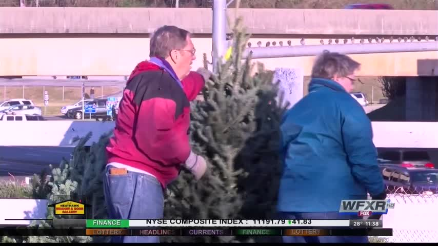 Ag life- How to keep your Christmas tree fresh_70212160