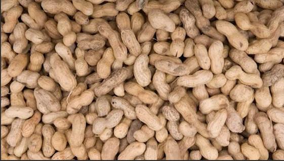 peanuts_1483929916467.jpg