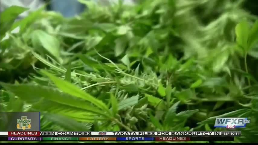 Virginia set for new marijuana laws_39825491