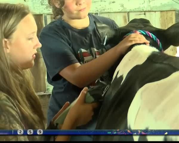 Ag Life- Kids showcase livestock at NRV Fair_32815076