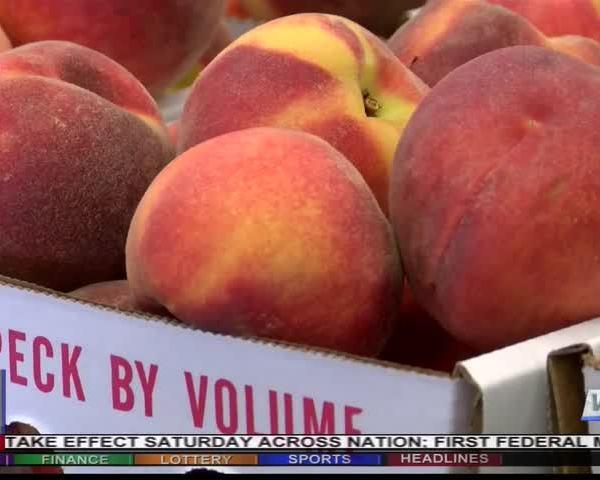 Ag Life- Peach season now underway_77604847