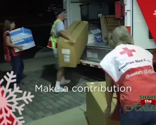 American Red Cross- Share the Holidays