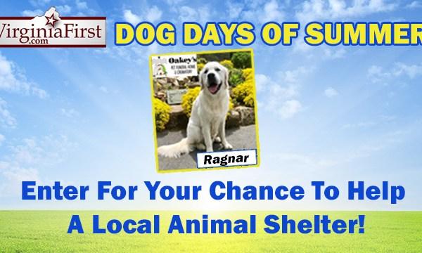 Dog Days of Summer 2017 Don't Miss_1530214421624.jpg.jpg