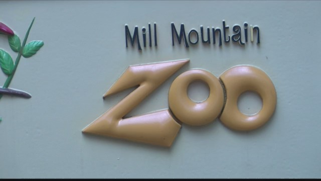 Happy Birthday, Mill Mountain Zoo!