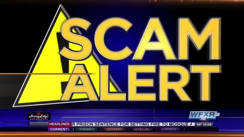 Scam Alert_67529026