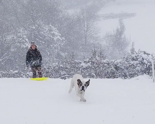 snow fun_1544400806789.jpg.jpg