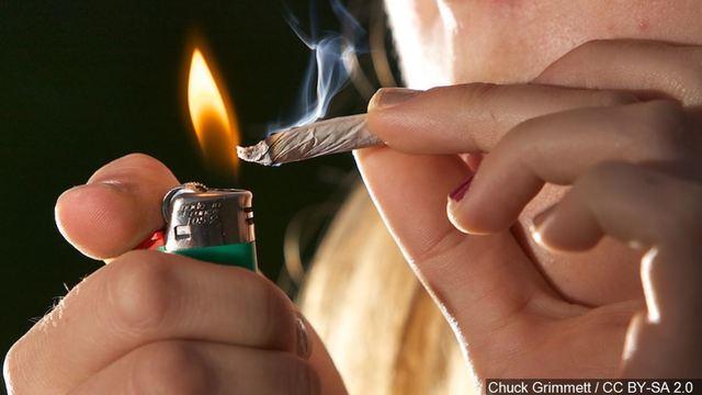 cannabis_1553094767617.JPG