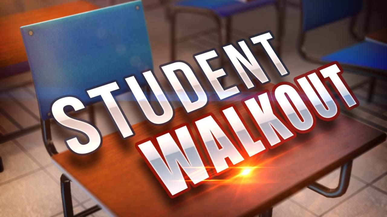 student walkout_1553612553011.jpg.jpg