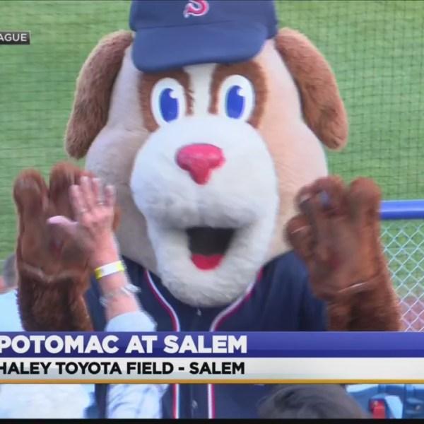 Carolina League: Potomac at Salem