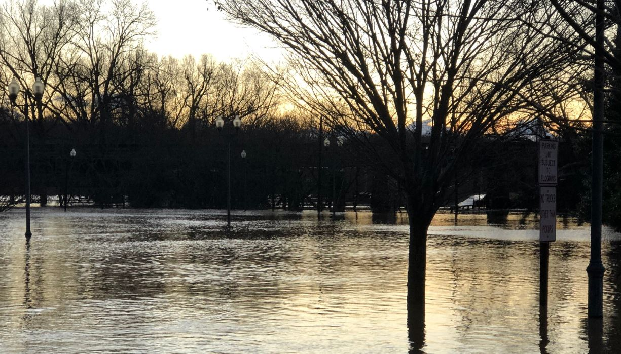 The Dan River rose to moderate flood levels on Friday, Feb. 7. (Photo: Breana Albizu/WFXR News)