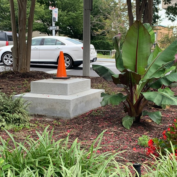 City officials and residents react to toppled Robert E. Lee memorial in downtown Roanoke.