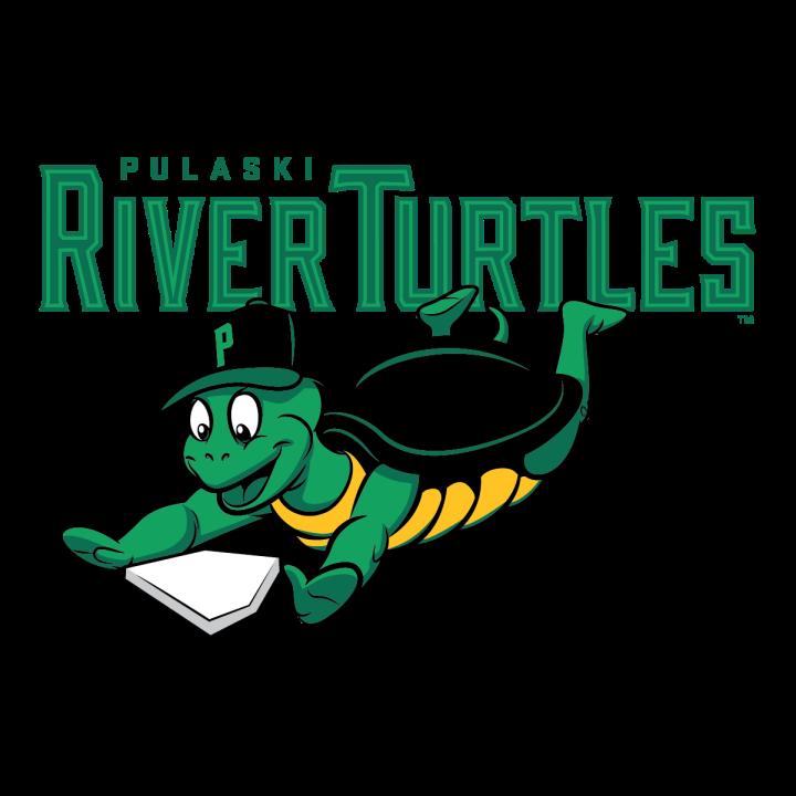 Afbeeldingsresultaat voor pulaski river turtles