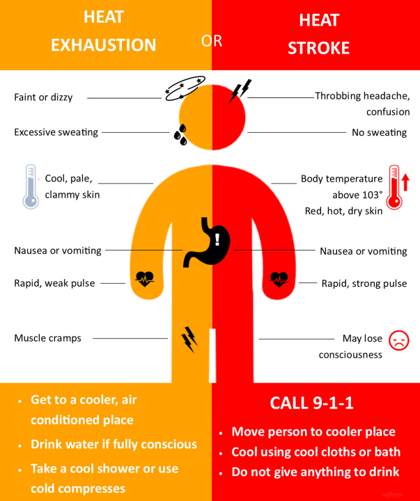 Know the signs of heat exhaustion, heat stroke and how to prevent them  during hot summer months | WFXRtv